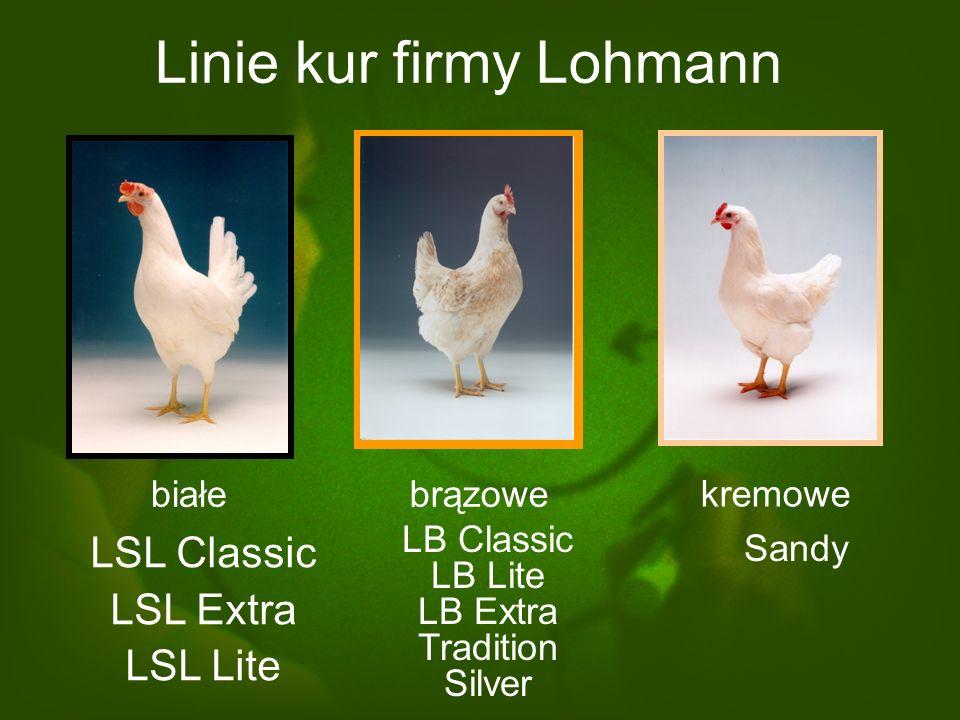 Linie kur firmy Lohmann