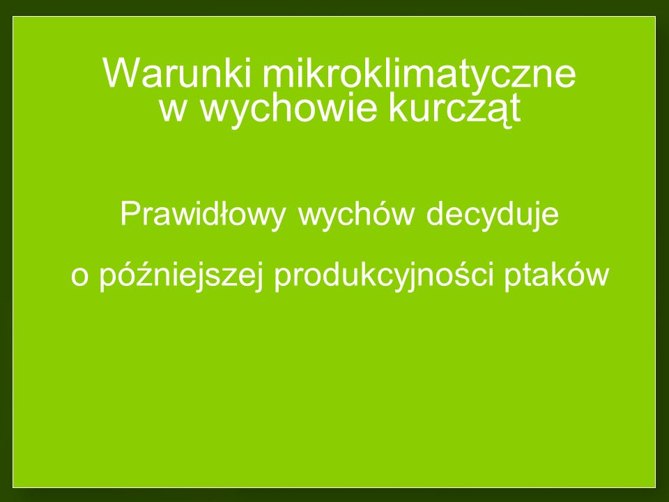 Warunki mikroklimatyczne w wychowie kurcząt