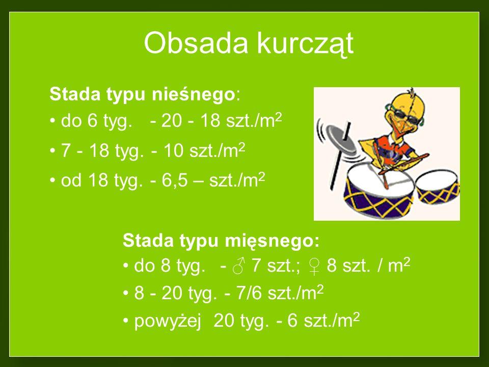 Obsada kurcząt Stada typu nieśnego: do 6 tyg. - 20 - 18 szt./m2