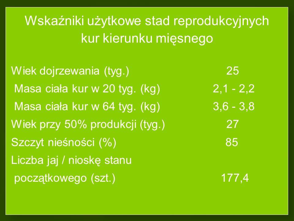 Wskaźniki użytkowe stad reprodukcyjnych kur kierunku mięsnego