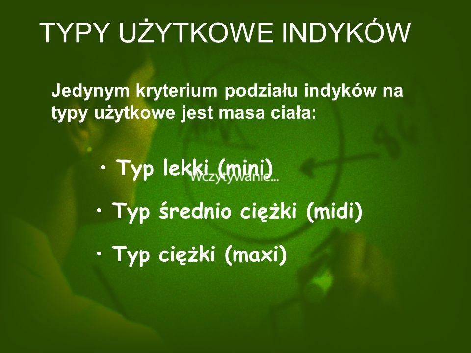 TYPY UŻYTKOWE INDYKÓW Typ lekki (mini) Typ średnio ciężki (midi)