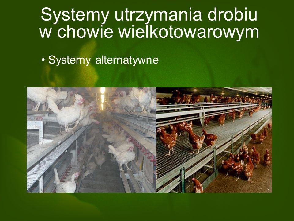 Systemy utrzymania drobiu w chowie wielkotowarowym