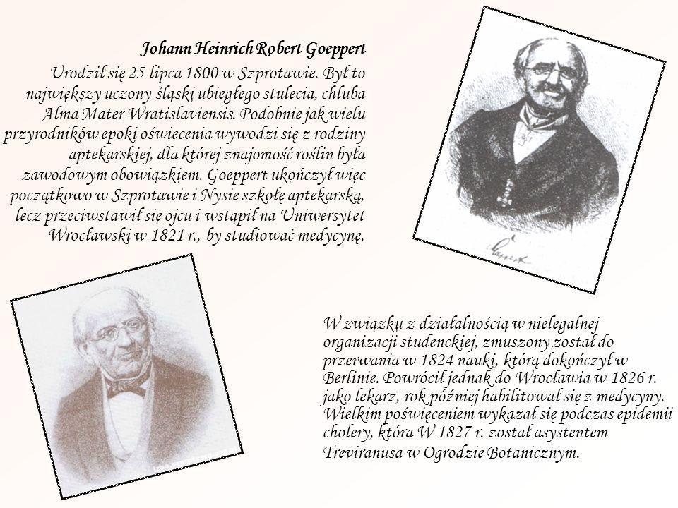Johann Heinrich Robert Goeppert