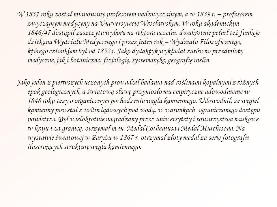 W 1831 roku został mianowany profesorem nadzwyczajnym, a w 1839 r