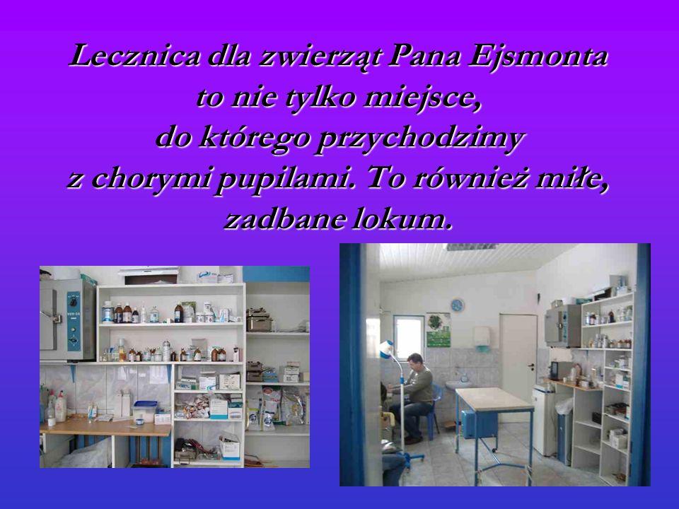 Lecznica dla zwierząt Pana Ejsmonta to nie tylko miejsce, do którego przychodzimy z chorymi pupilami.