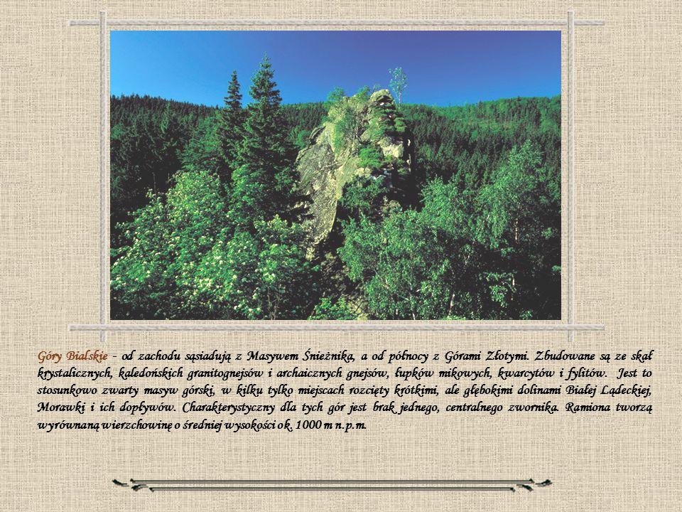 Góry Bialskie - od zachodu sąsiadują z Masywem Śnieżnika, a od północy z Górami Złotymi.