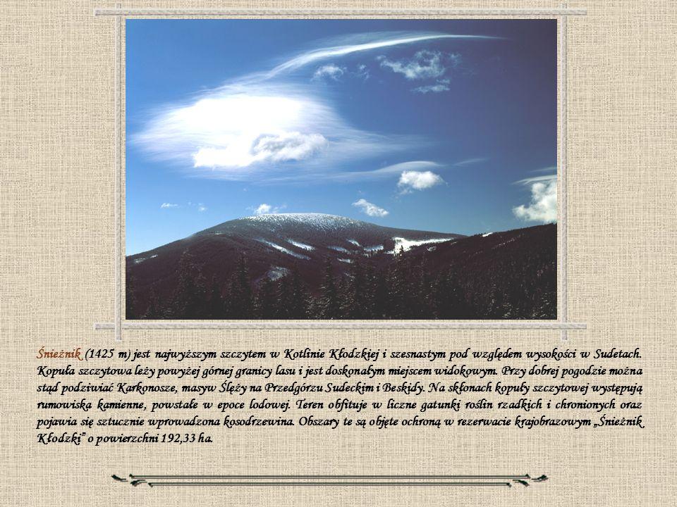 Śnieżnik (1425 m) jest najwyższym szczytem w Kotlinie Kłodzkiej i szesnastym pod względem wysokości w Sudetach.
