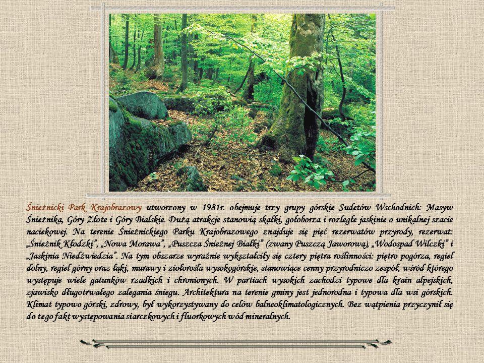Śnieżnicki Park Krajobrazowy utworzony w 1981r
