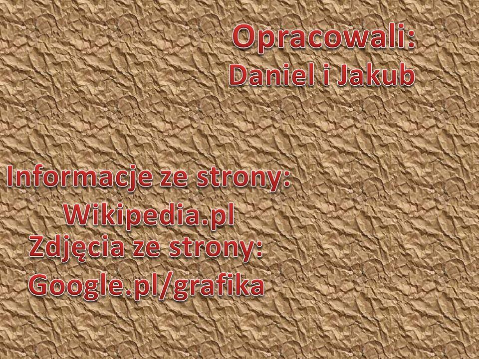 Opracowali: Daniel i Jakub Informacje ze strony: Wikipedia.pl