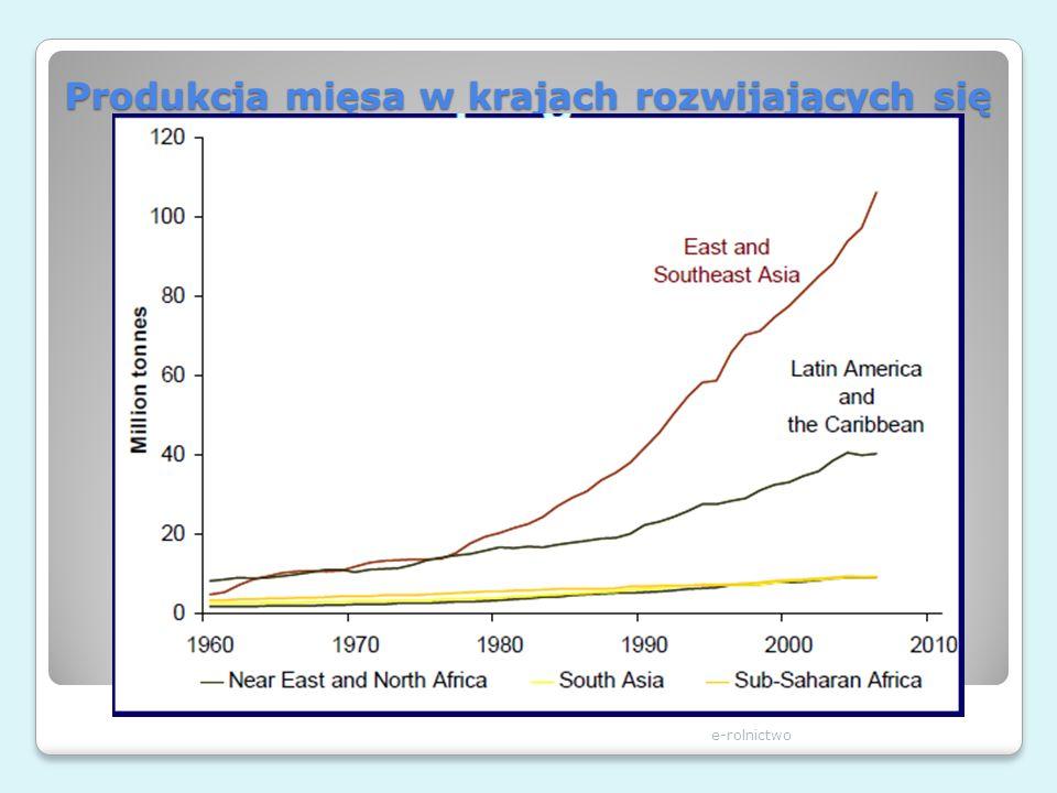 Produkcja mięsa w krajach rozwijających się