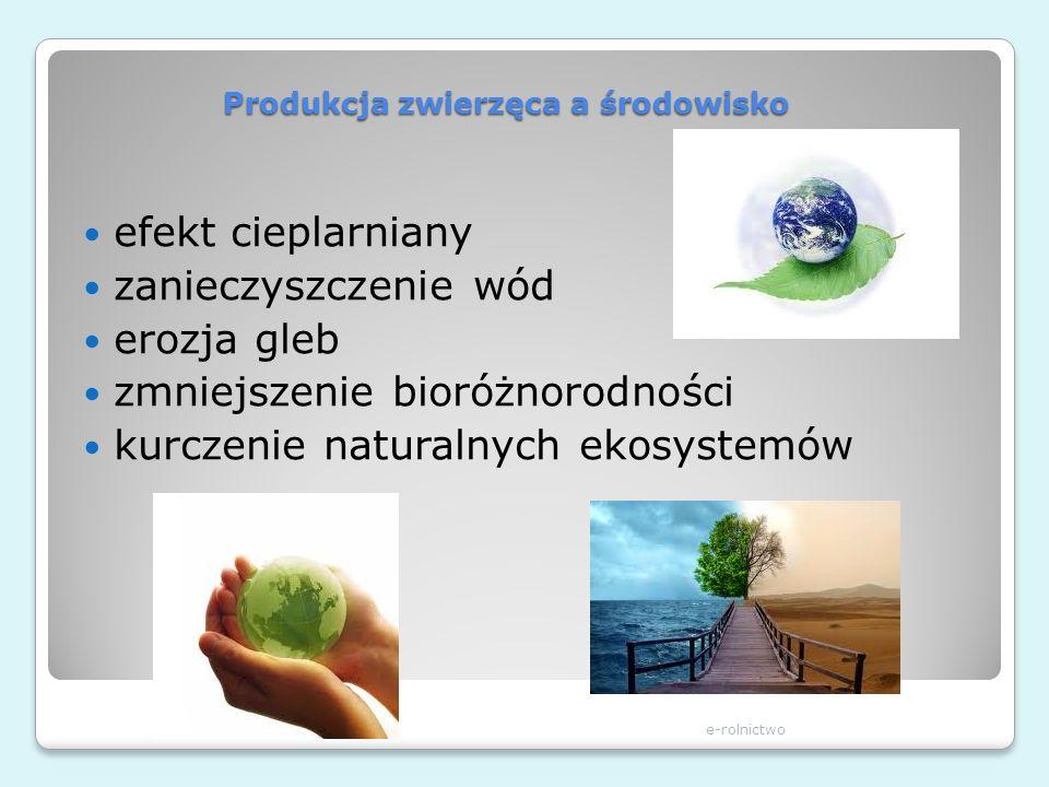 Produkcja zwierzęca a środowisko