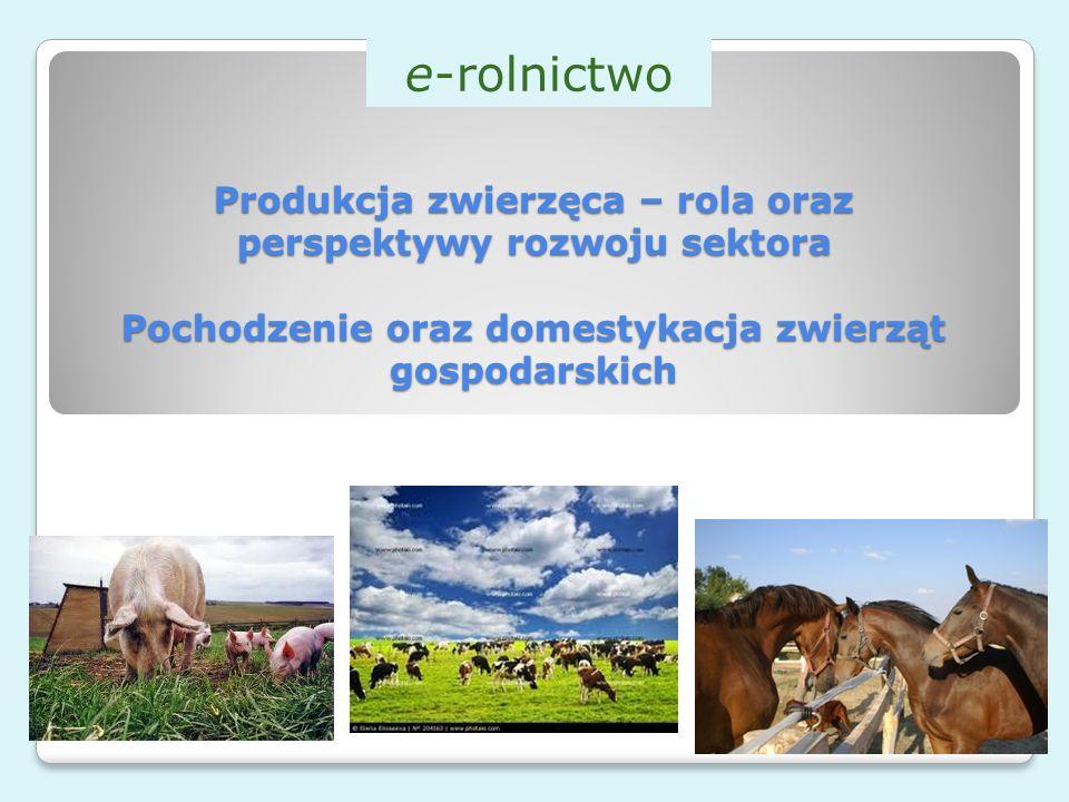 e-rolnictwo Produkcja zwierzęca – rola oraz perspektywy rozwoju sektora Pochodzenie oraz domestykacja zwierząt gospodarskich.