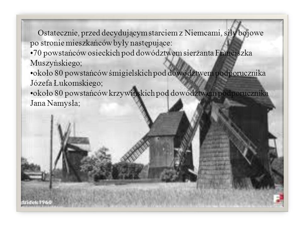 Ostatecznie, przed decydującym starciem z Niemcami, siły bojowe po stronie mieszkańców były następujące: