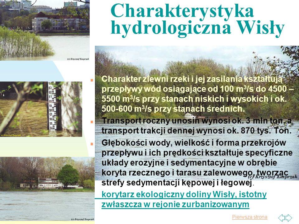 Charakterystyka hydrologiczna Wisły