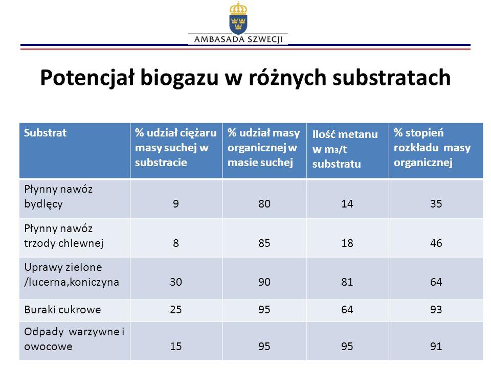 Potencjał biogazu w różnych substratach