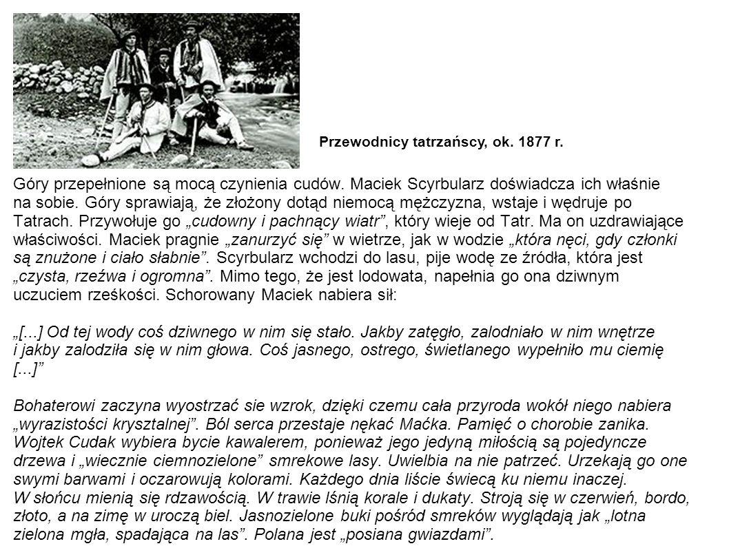 Przewodnicy tatrzańscy, ok. 1877 r.