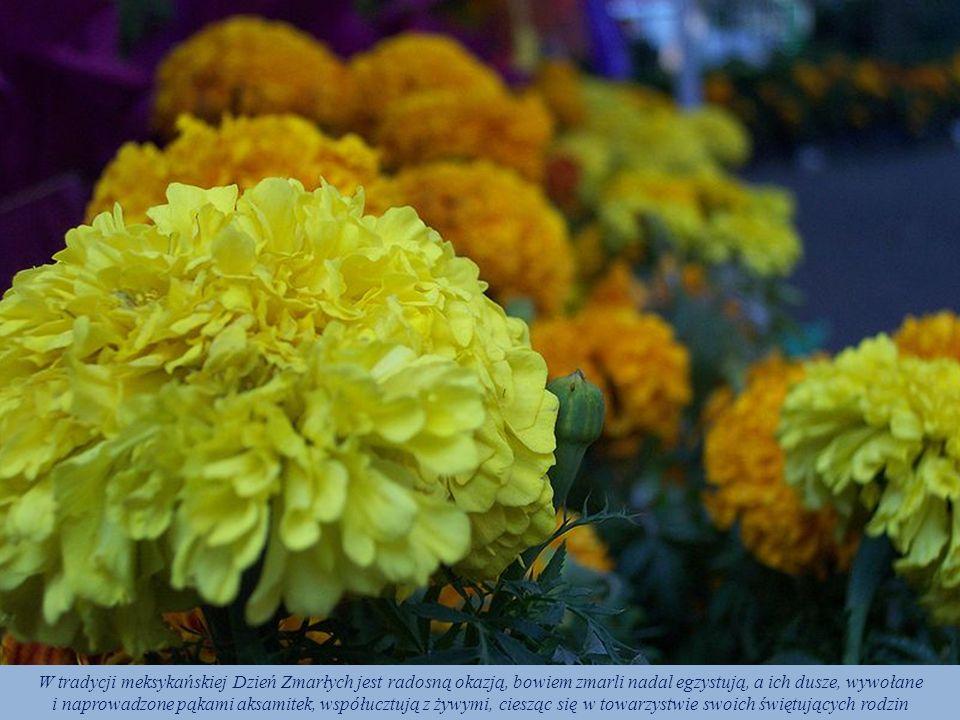W tradycji meksykańskiej Dzień Zmarłych jest radosną okazją, bowiem zmarli nadal egzystują, a ich dusze, wywołane