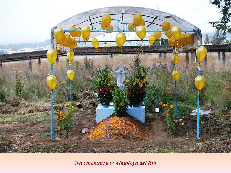 Na cmentarzu w Almoloya del Rio