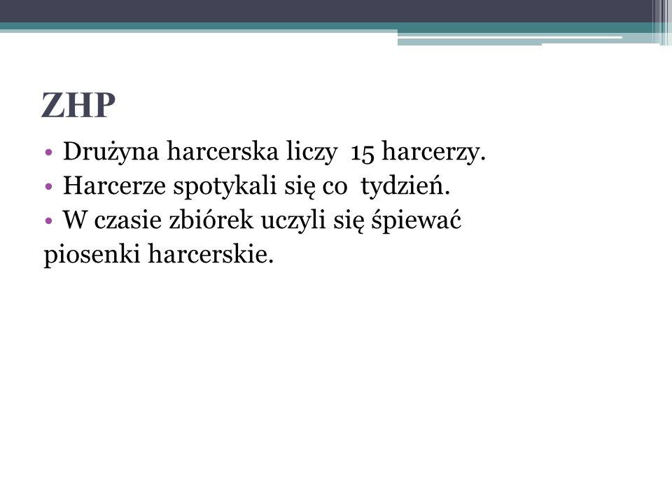 ZHP Drużyna harcerska liczy 15 harcerzy.