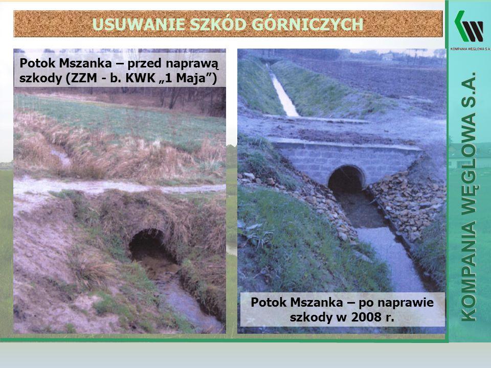 USUWANIE SZKÓD GÓRNICZYCH Potok Mszanka – po naprawie szkody w 2008 r.