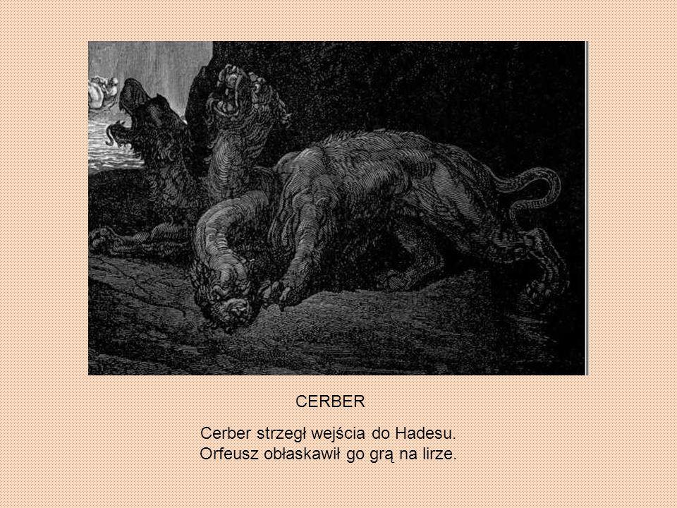 Cerber strzegł wejścia do Hadesu. Orfeusz obłaskawił go grą na lirze.