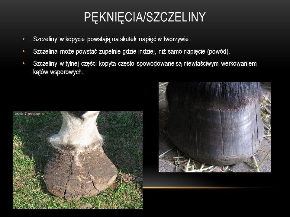 Pęknięcia/szczeliny Szczeliny w kopycie powstają na skutek napięć w tworzywie.