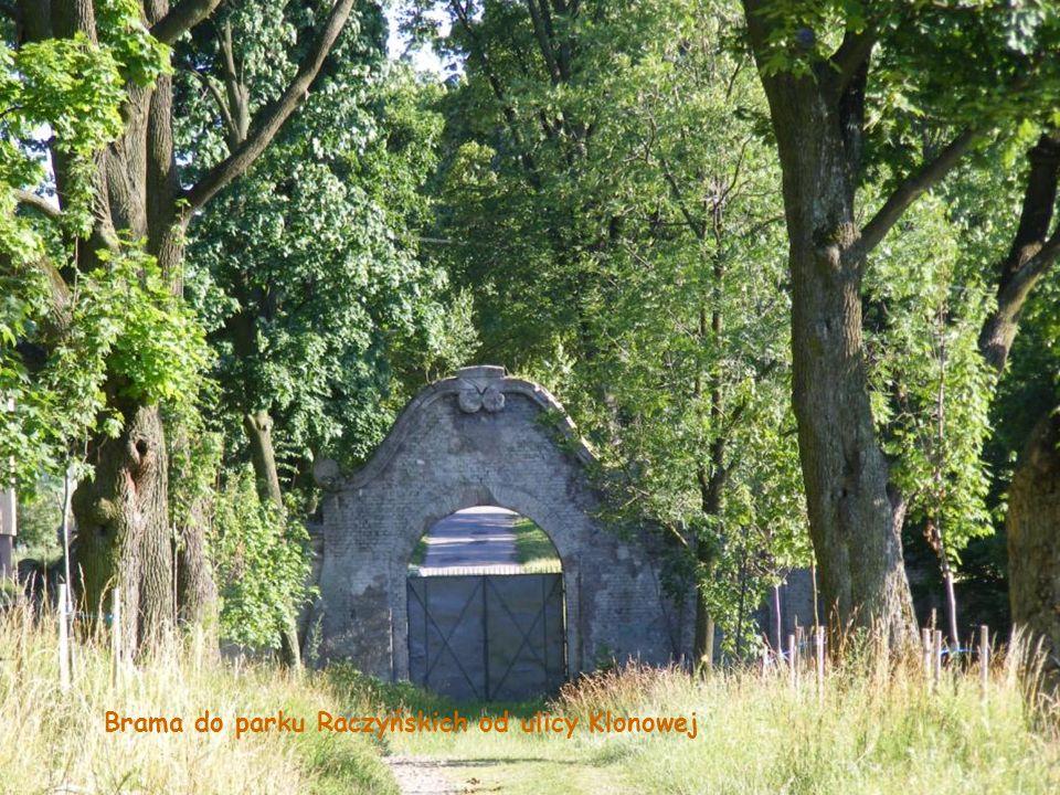 Brama do parku Raczyńskich od ulicy Klonowej