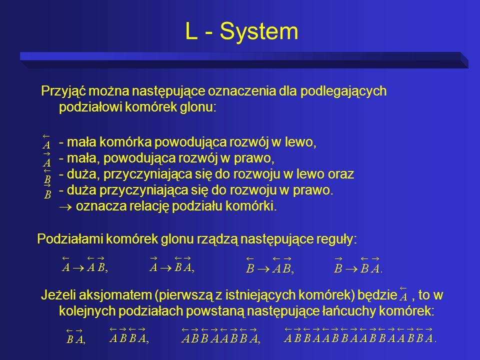 L - System Przyjąć można następujące oznaczenia dla podlegających podziałowi komórek glonu: