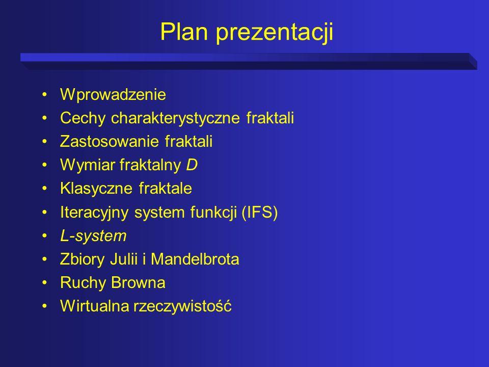 Plan prezentacji Wprowadzenie Cechy charakterystyczne fraktali