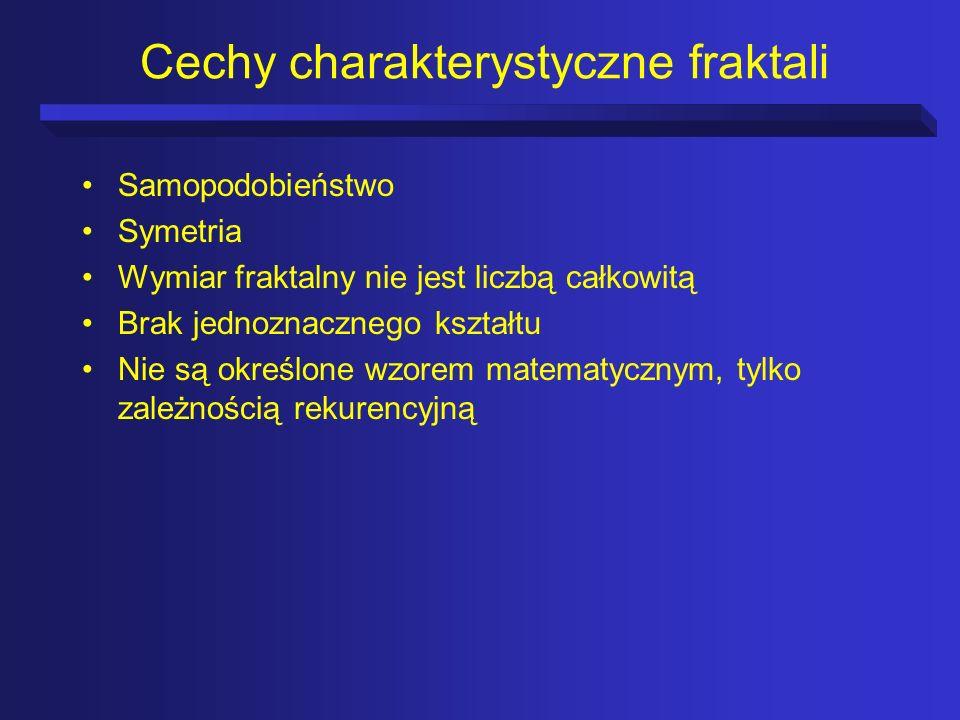 Cechy charakterystyczne fraktali