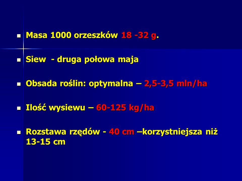 Masa 1000 orzeszków 18 -32 g. Siew - druga połowa maja. Obsada roślin: optymalna – 2,5-3,5 mln/ha.