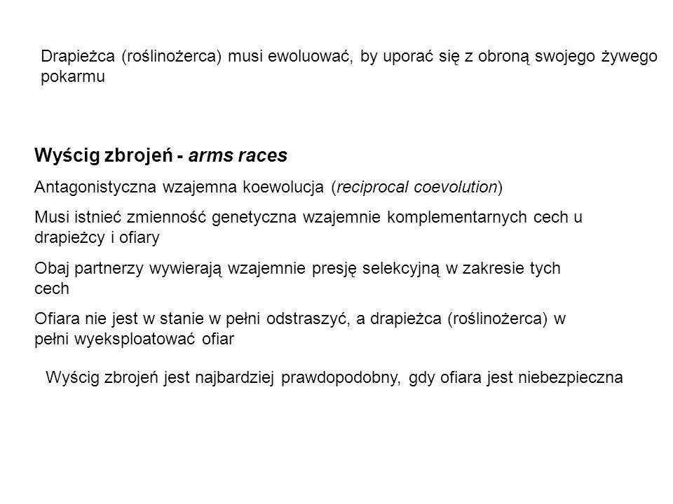 Wyścig zbrojeń - arms races