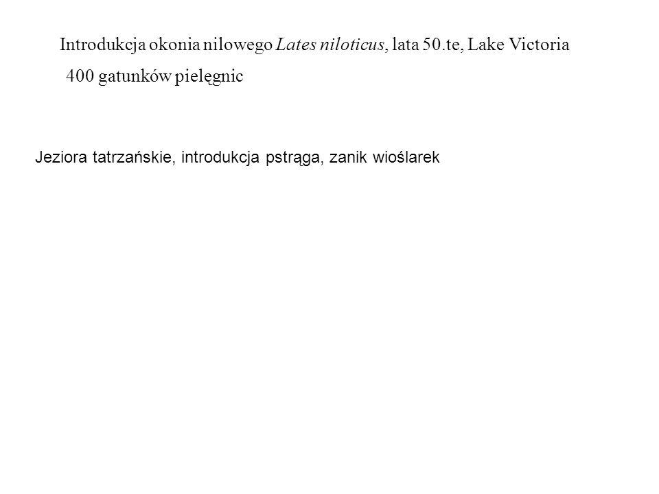 Introdukcja okonia nilowego Lates niloticus, lata 50.te, Lake Victoria