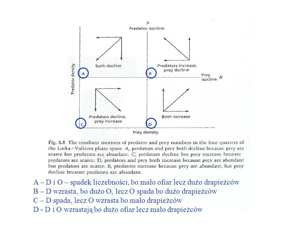 A – D i O – spadek liczebności, bo mało ofiar lecz dużo drapieżców