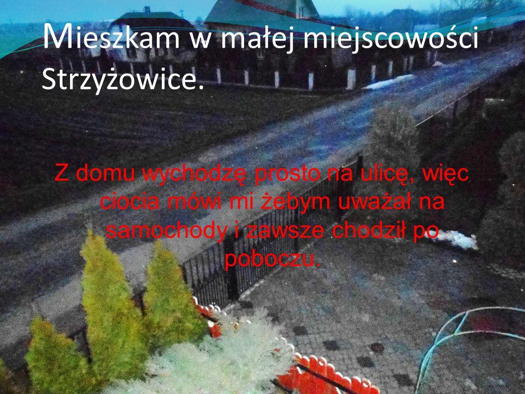 Mieszkam w małej miejscowości Strzyżowice.