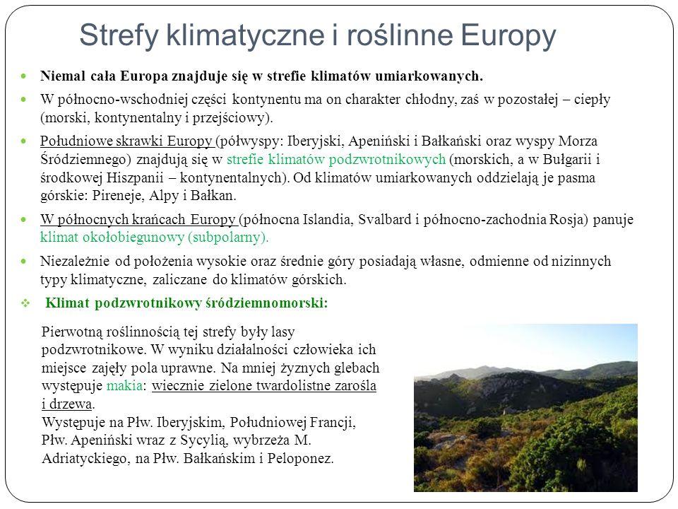 Strefy klimatyczne i roślinne Europy