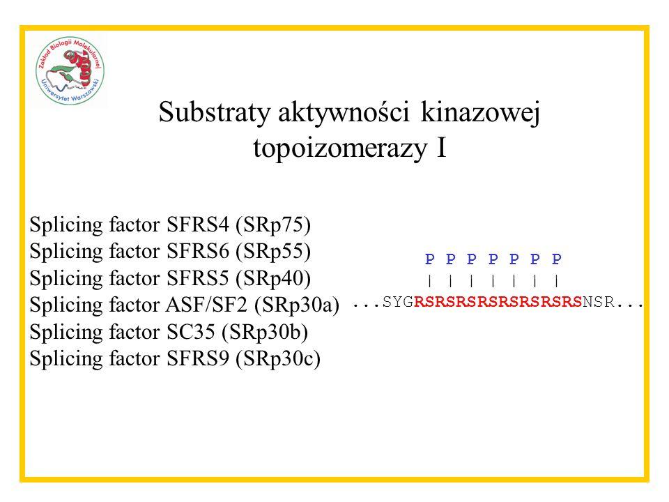 Substraty aktywności kinazowej