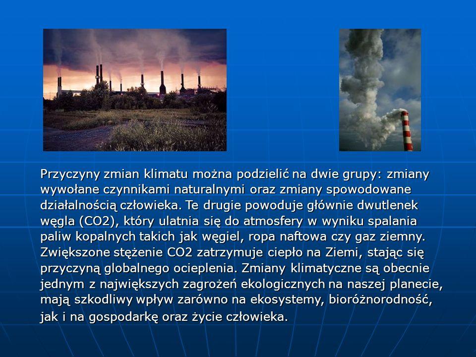 Przyczyny zmian klimatu można podzielić na dwie grupy: zmiany wywołane czynnikami naturalnymi oraz zmiany spowodowane działalnością człowieka.