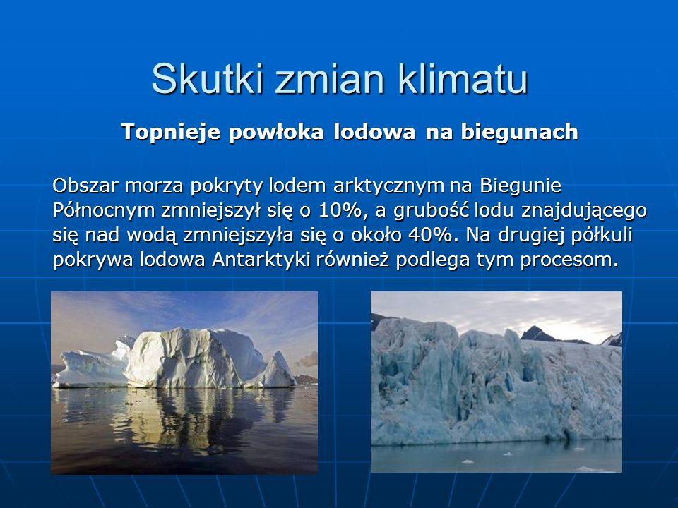 Topnieje powłoka lodowa na biegunach