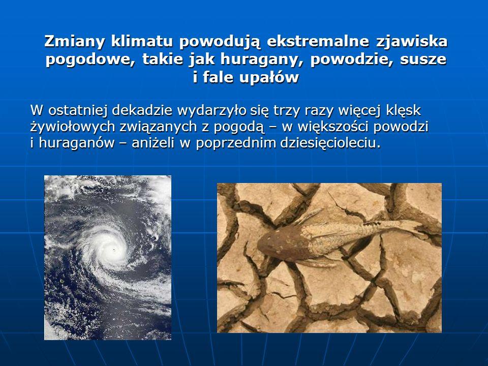 Zmiany klimatu powodują ekstremalne zjawiska pogodowe, takie jak huragany, powodzie, susze i fale upałów