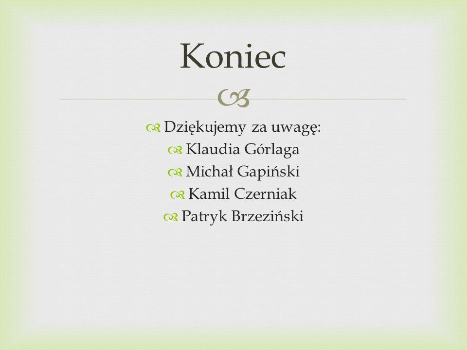 Koniec Dziękujemy za uwagę: Klaudia Górlaga Michał Gapiński
