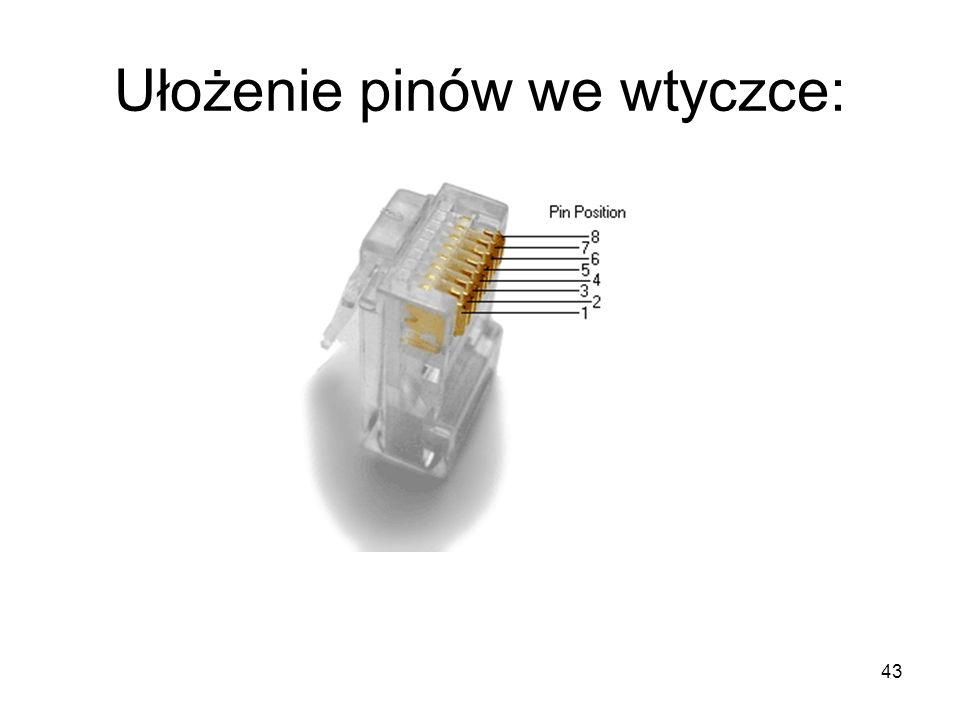 Ułożenie pinów we wtyczce: