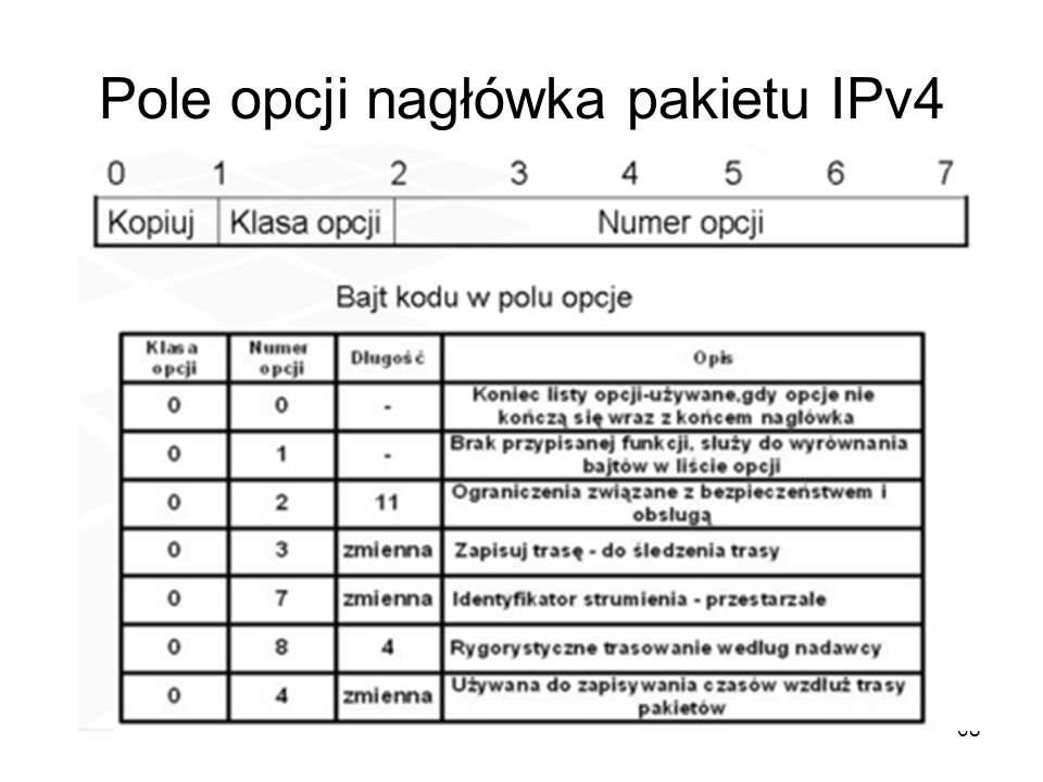 Pole opcji nagłówka pakietu IPv4