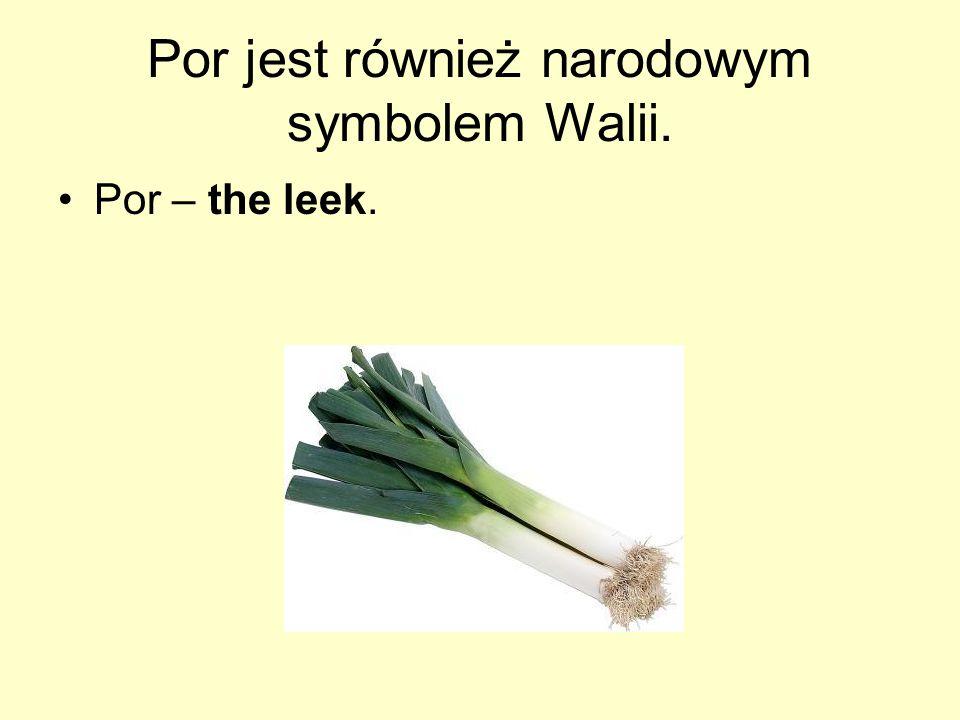 Por jest również narodowym symbolem Walii.
