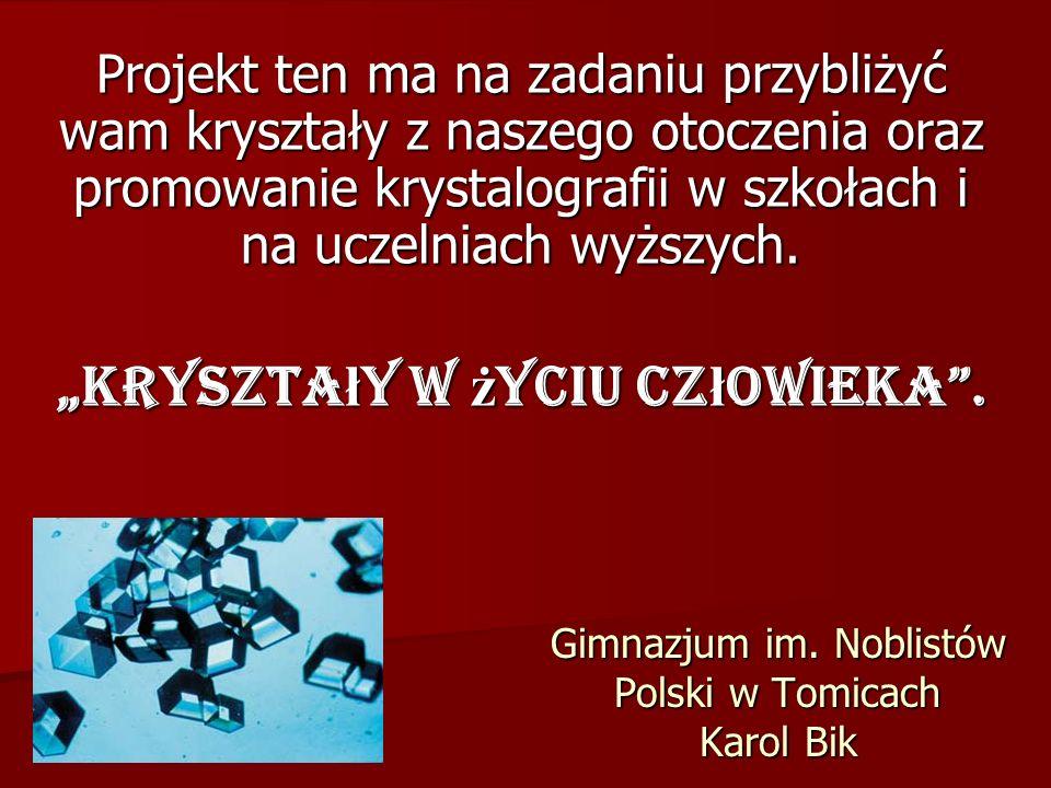 Gimnazjum im. Noblistów Polski w Tomicach Karol Bik