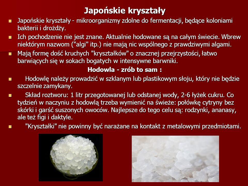 Japońskie kryształy Japońskie kryształy - mikroorganizmy zdolne do fermentacji, będące koloniami bakterii i drożdży.