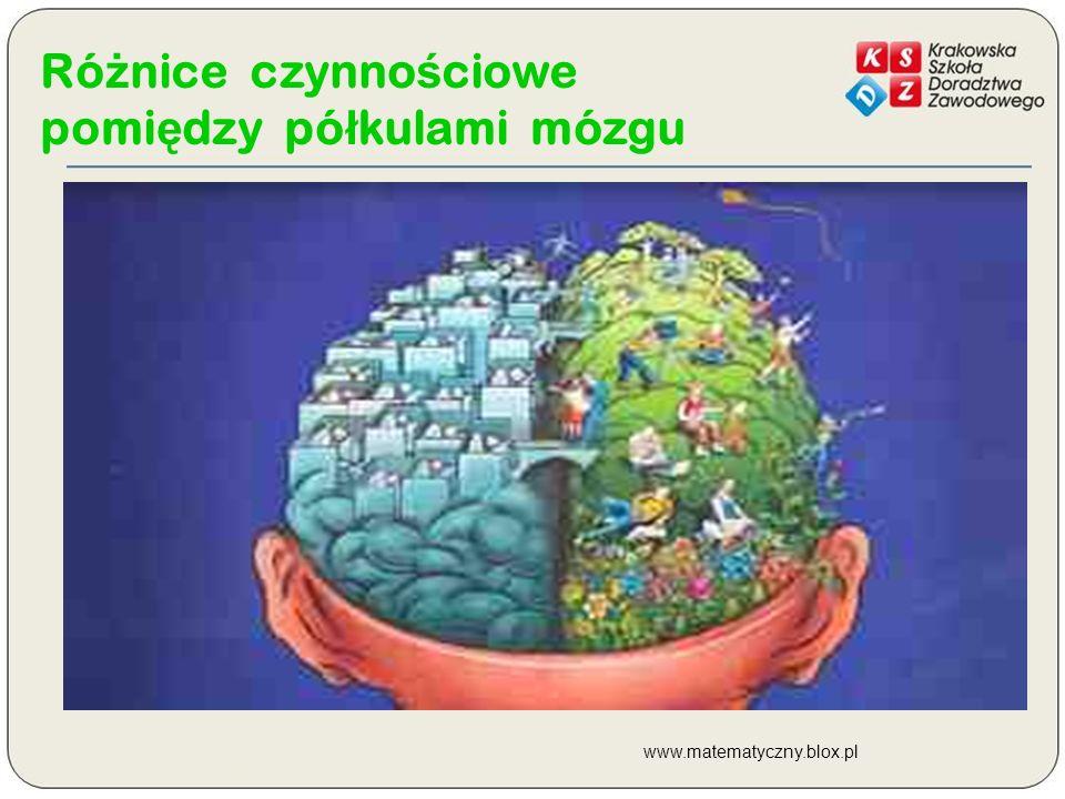 Różnice czynnościowe pomiędzy półkulami mózgu