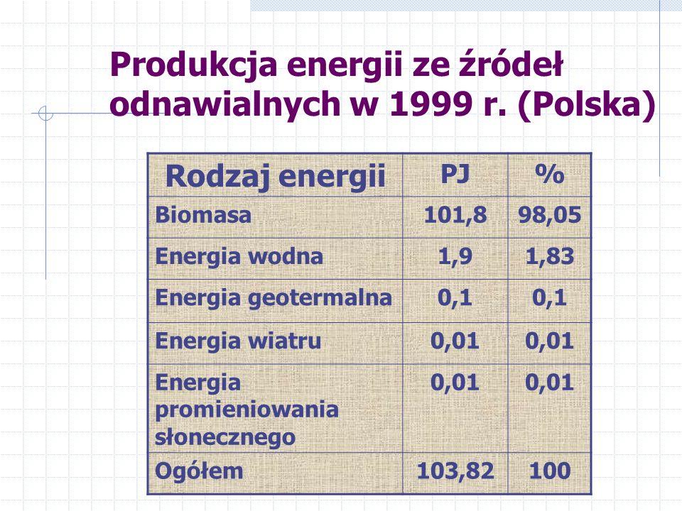 Produkcja energii ze źródeł odnawialnych w 1999 r. (Polska)