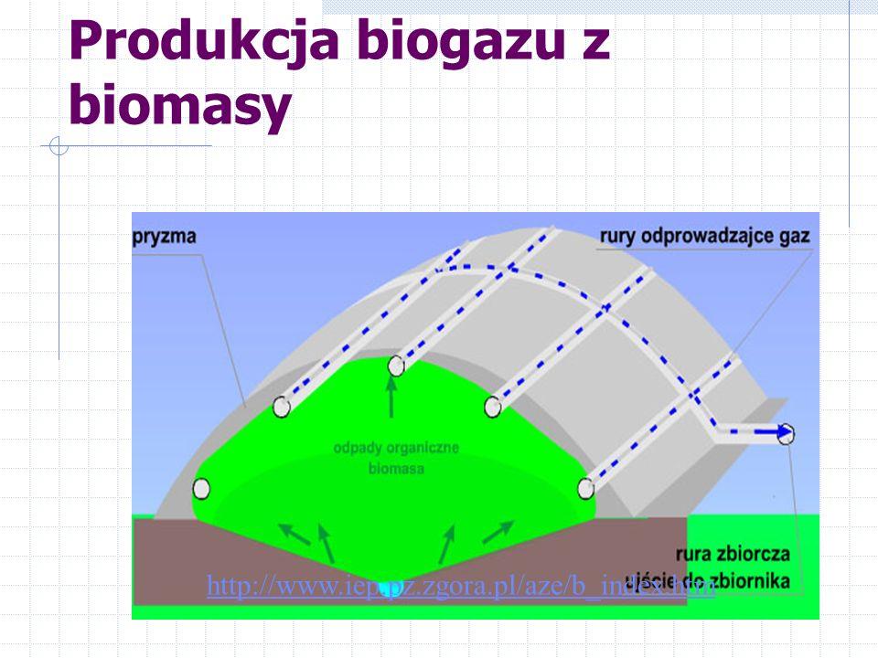 Produkcja biogazu z biomasy
