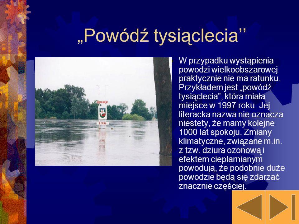 """""""Powódź tysiąclecia''"""